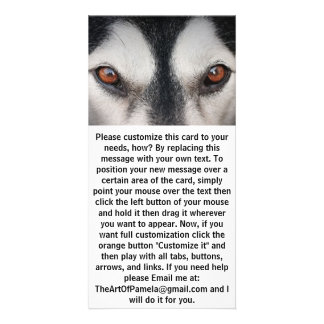 Malamute Dog Brown Eyes Card