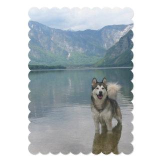 Malamute Dog Custom Invites