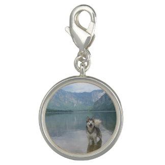 Malamute Dog Photo Charms