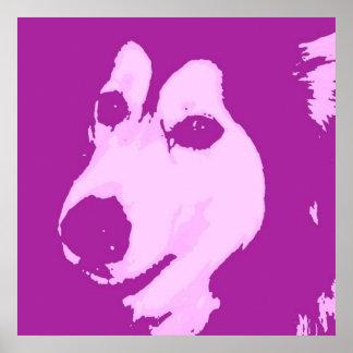 Malamute Dog Poster