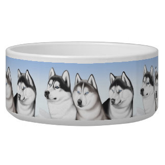 Malamute Husky Dogs Pet Bowl
