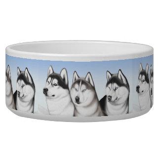 Malamute Husky Dogs Pet Bowl Dog Food Bowl