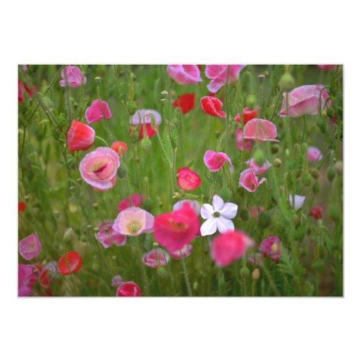 Malas hierbas coloridas invitación 12,7 x 17,8 cm