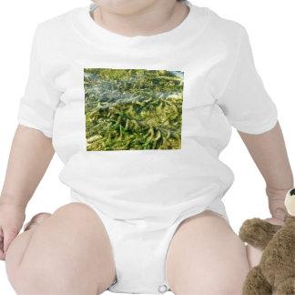 Malas hierbas del agua bajo fondo del agua camisetas