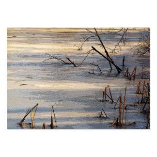 Malas hierbas en el ATC del hielo Tarjetas De Visita Grandes