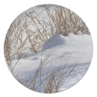 Malas hierbas en placa de la nieve plato de cena