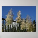 Malas hierbas esbeltas en un día del otoño poster