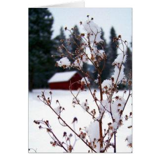 Malas hierbas Nevado y granero rojo Tarjeta