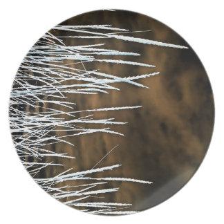 Malas hierbas salvajes Brown del arte de la Plato De Cena