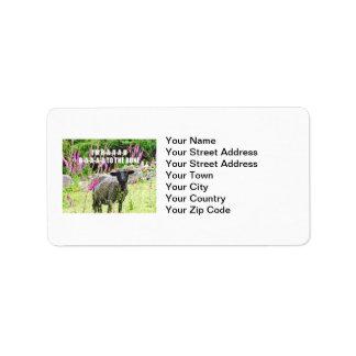 Malas ovejas negras etiqueta de dirección