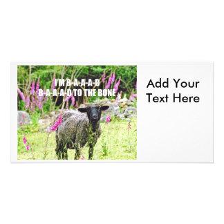 Malas ovejas negras tarjetas fotograficas personalizadas