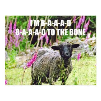 Malas ovejas negras postales