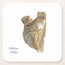 Malayan Colugo Coaster