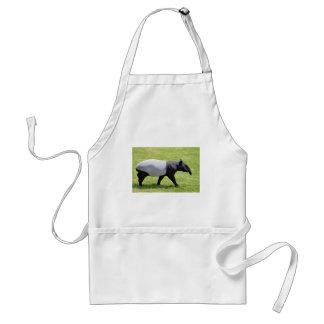 Malayan tapir walking on grass adult apron