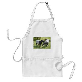 Malayan tapirs on grass adult apron