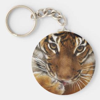 Malayan Tiger #1 keychain