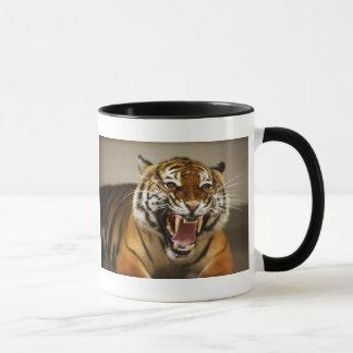 Malayan Tiger #2 mug