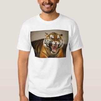 Malayan Tiger #2 Shirt