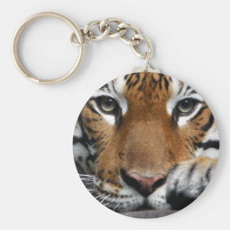 Malayan Tiger #3 keychain