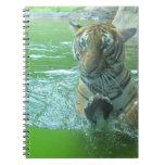 Malayan Tiger Note Books