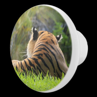 Malayan Tiger Photo Custom Kitchen Knob /