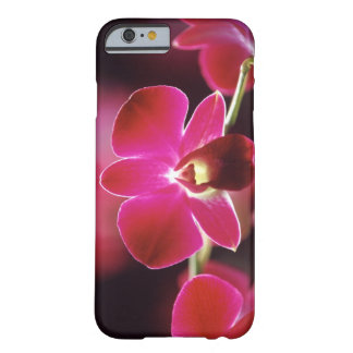 Malaysia, Orchid Barely There iPhone 6 Case