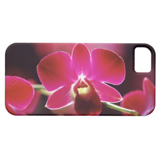 Malaysia, Orchid iPhone 5 Cover