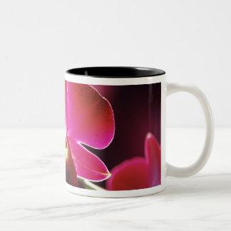 Malaysia, Orchid Two-Tone Coffee Mug