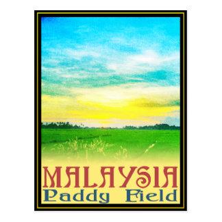 Malaysia - Paddy Field Postcard