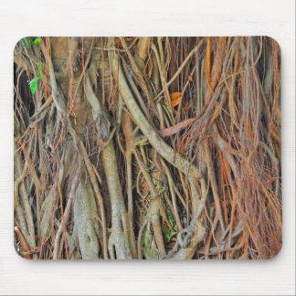 Malaysian Banyan Tree Roots Mouse Pad