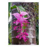 Malaysian Orchid Tree Greeting Card