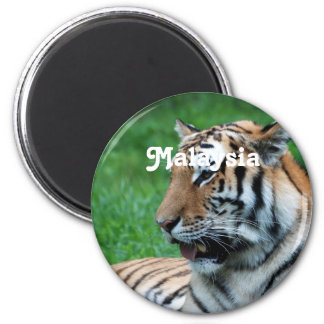 Malaysian Tiger 2 Inch Round Magnet