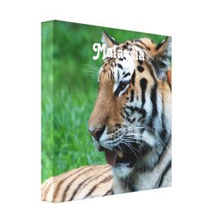 Malaysian Tiger Gallery Wrap Canvas