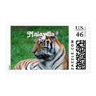 Malaysian Tiger Postage Stamp