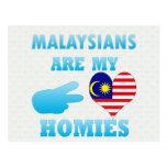 Malaysians are my Homies Postcard