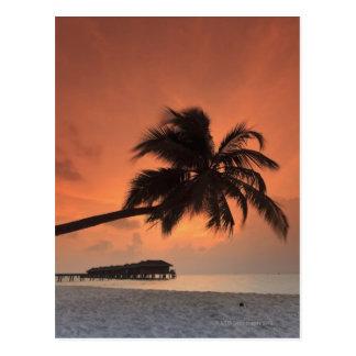 Maldivas atolón de Meemu isla de Medhufushi Tarjeta Postal