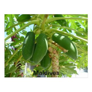 MALDIVAS POSTAL