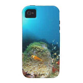 Maldives Anemone fish swimming underwater Case For The iPhone 4