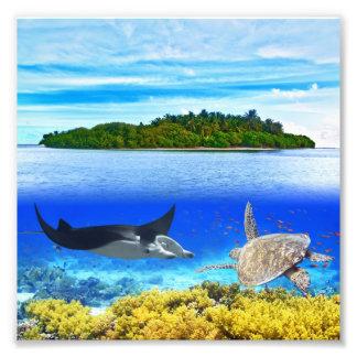 Maldives atoll photographic print