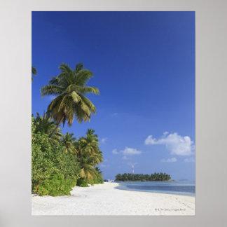 Maldives, Meemu Atoll, Medhufushi Island Poster