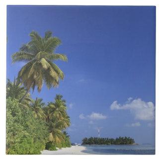 Maldives, Meemu Atoll, Medhufushi Island Large Square Tile