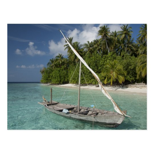 Maldives, North Male Atoll, Island of Kuda Postcard