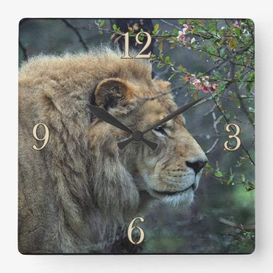 Male African Lion Big Cat Lion-Lover Wall Clock