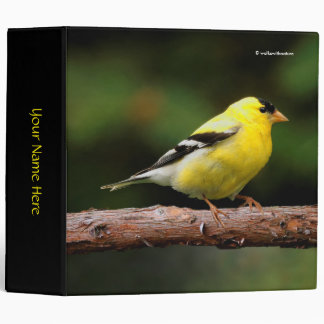 Male American Goldfinch on the Unedo 3 Ring Binder