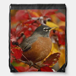 Male American Robin in Black Hawthorn 2 Drawstring Bags