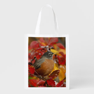 Male American Robin in Black Hawthorn 2 Market Totes
