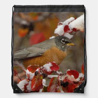 Male American Robin in Black Hawthorn Cinch Bag