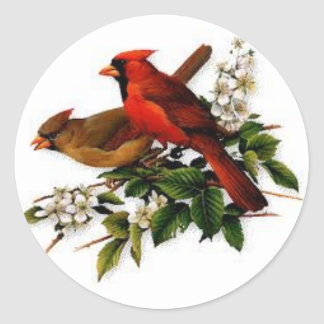 Male and Female cardinal on a  blooming branch Round Sticker