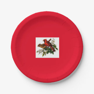 Male and Female cardinal paper plate 7 Inch Paper Plate