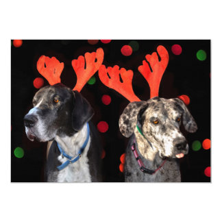 Male and female Great Dane in reindeer antlers Card